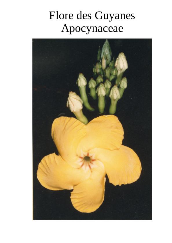 Flore des trois Guyanes, Apocynaceae par Lucile Allorge